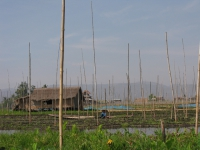 floating-gardens-inle-lake-myanmar-2