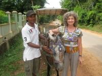 ogre_iland_horsecart