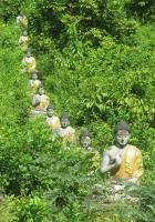 row_of_buddhas