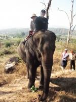 elephant-ride-pai-thailand